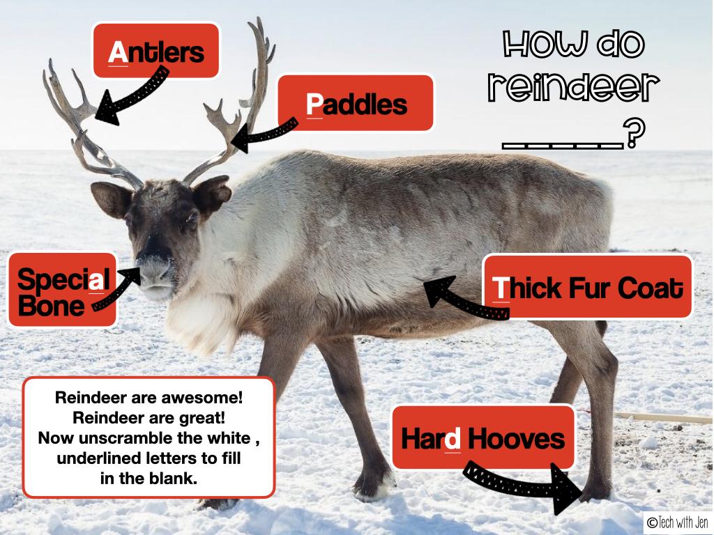 fun reindeer activity to help teachers de-stress during the holiday season